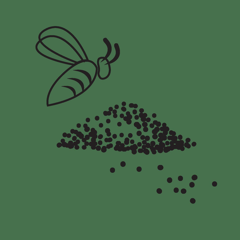 Polline (pollen)